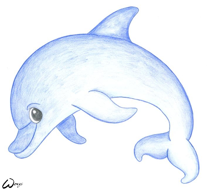 Dolphin pencil drawing at getdrawings free for personal use 706x652 drawings of dolphins leversetdujourfo thecheapjerseys Choice Image