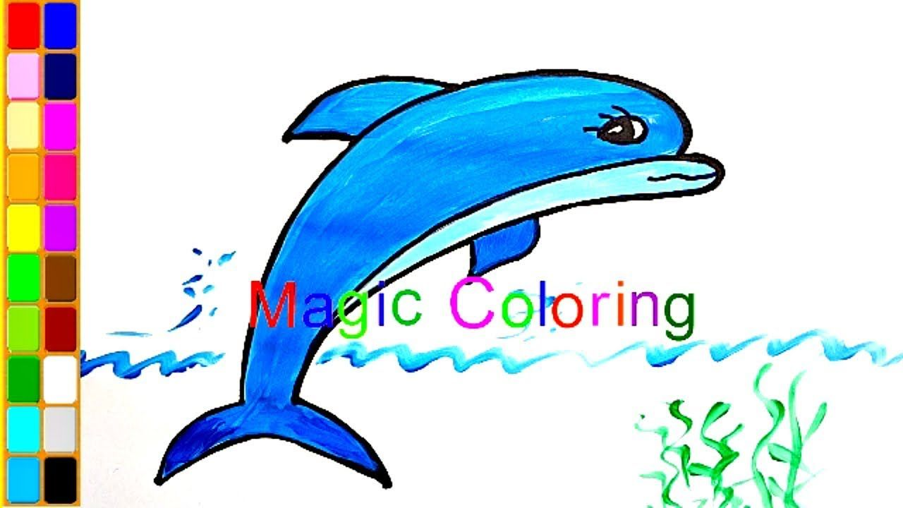 1280x720 How To Draw A Dolphin