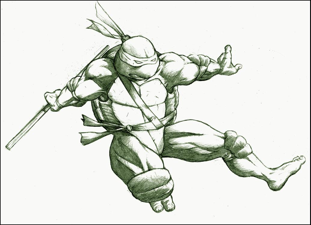1034x751 Donatello By Mjt423