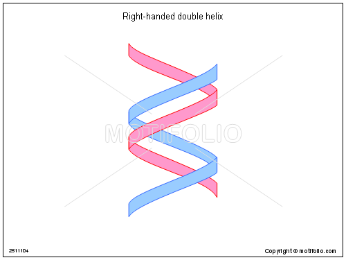 500x375 Right Handed Double Helix Illustrations