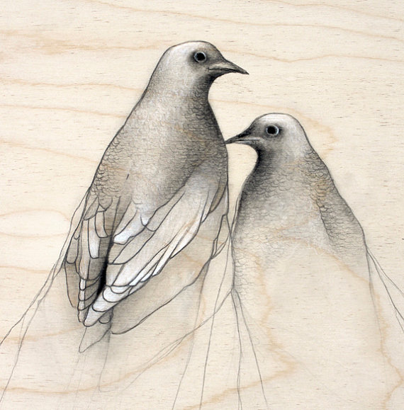 Dove Drawing Pictures at GetDrawings com | Free for personal