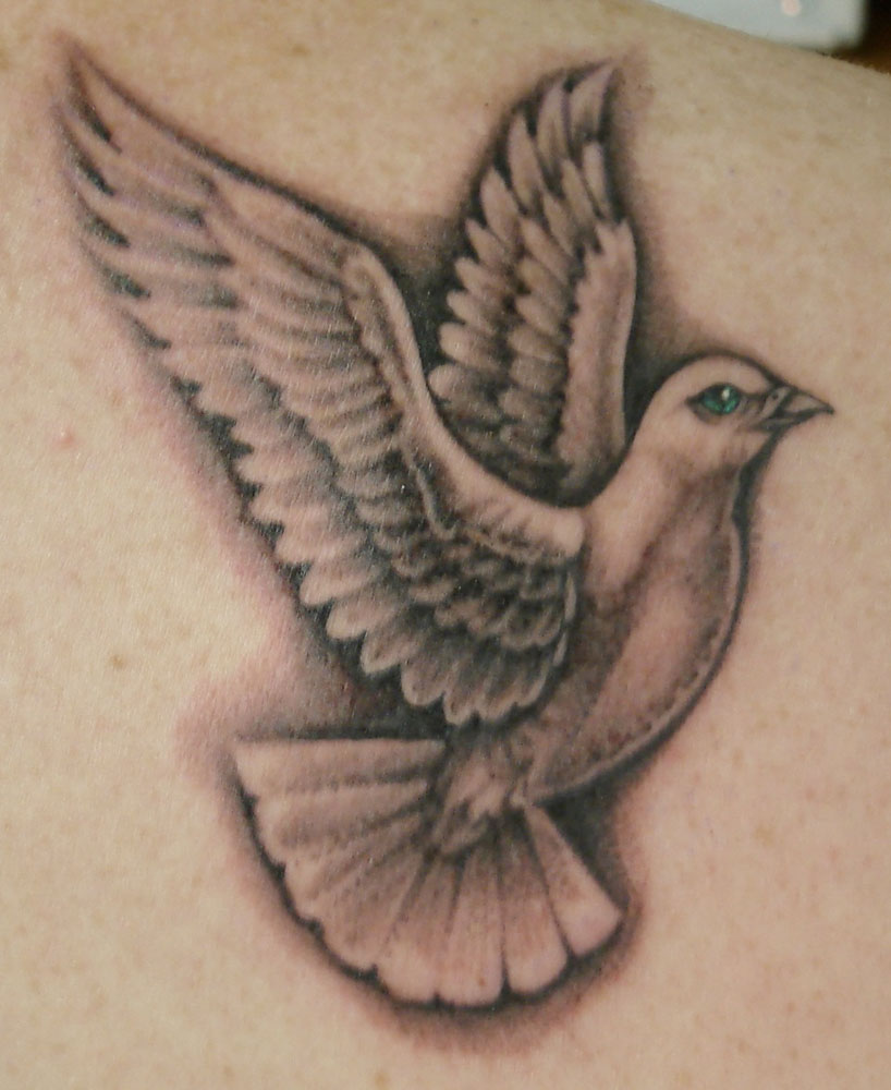 Dove drawing tattoo at getdrawings free for personal use dove 818x1000 20 dove tattoo designs and ideas for girls voltagebd Images