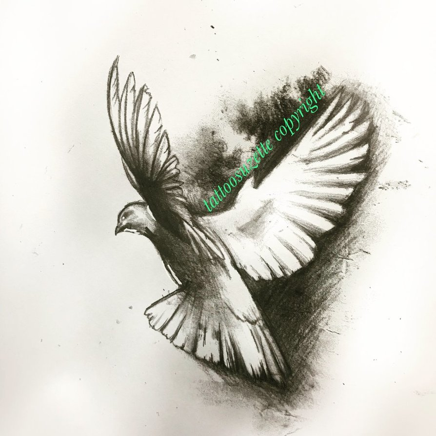 Dove Drawing Tattoo at GetDrawings com | Free for personal