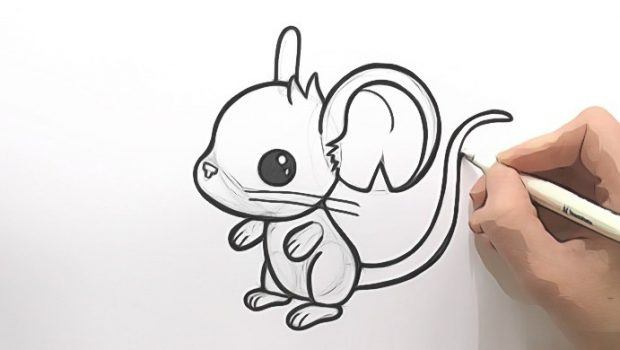 620x350 Drawing Animals In Pencil Pdf Download Review