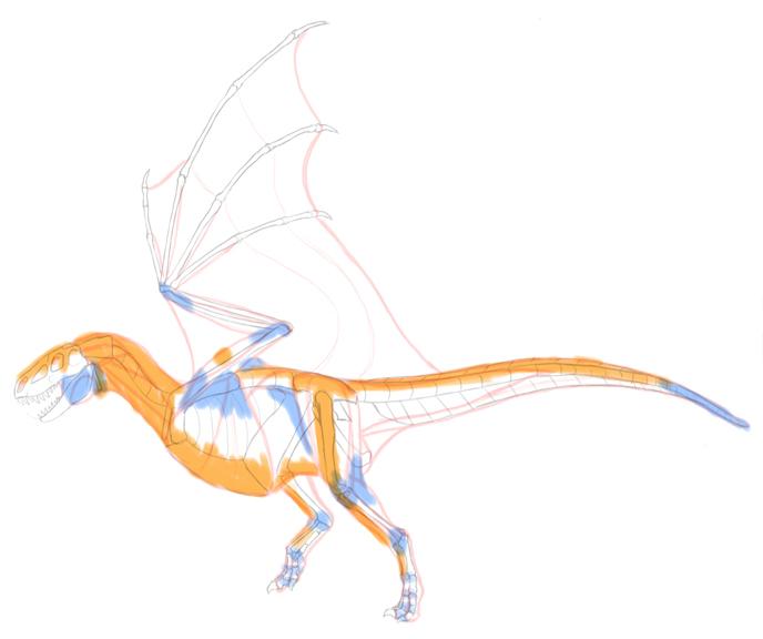688x576 How To Draw Dragons Step By Step With Monika Zagrobelna