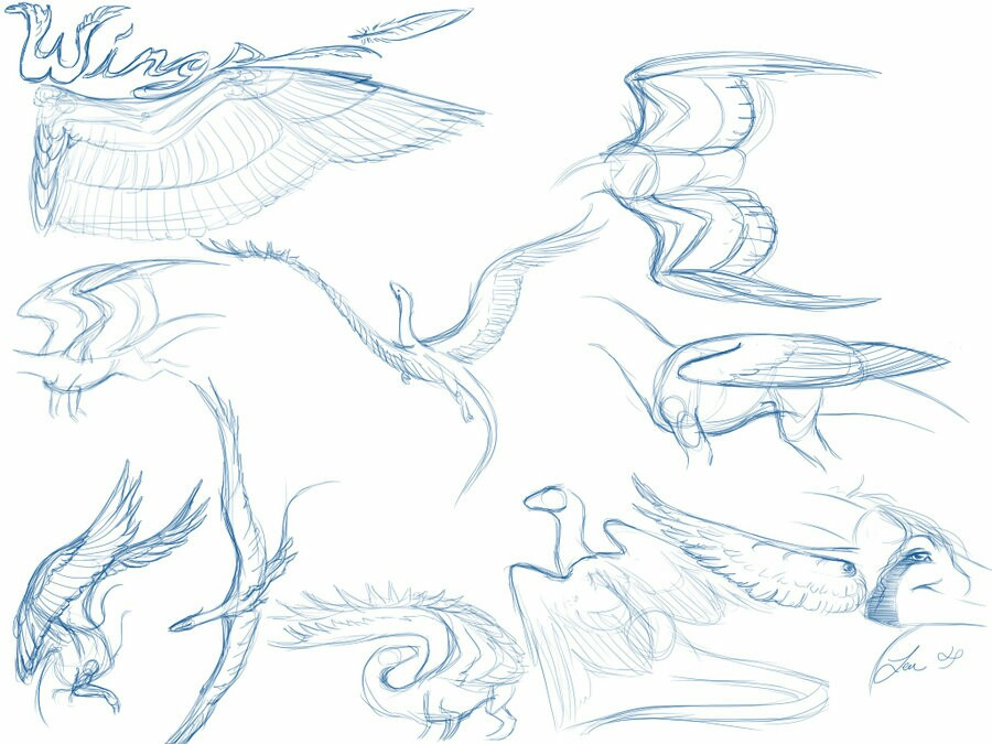 900x675 dragon anime drawing