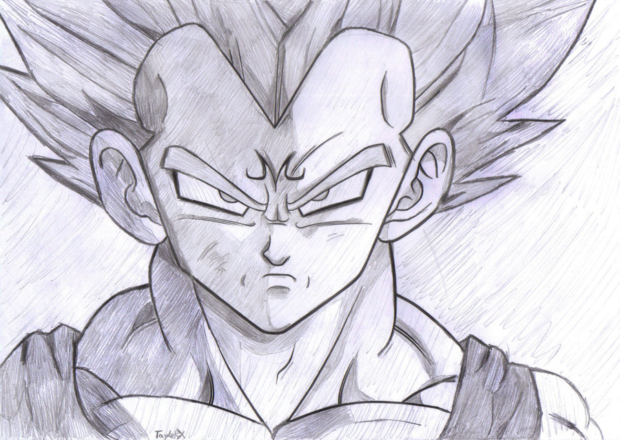 900x640 Photos Dragon Ball Z Sketches,
