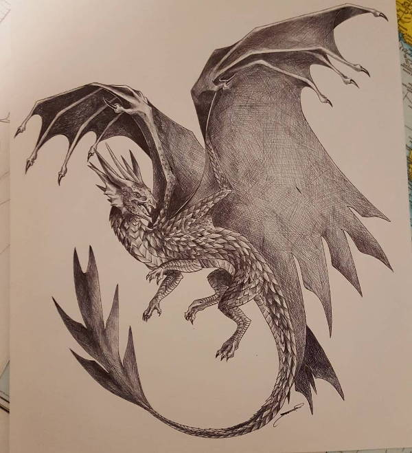 600x659 Dragon Drawings
