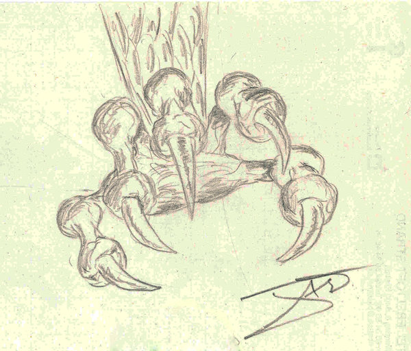 600x512 Dragon Claw By Enigmacomics