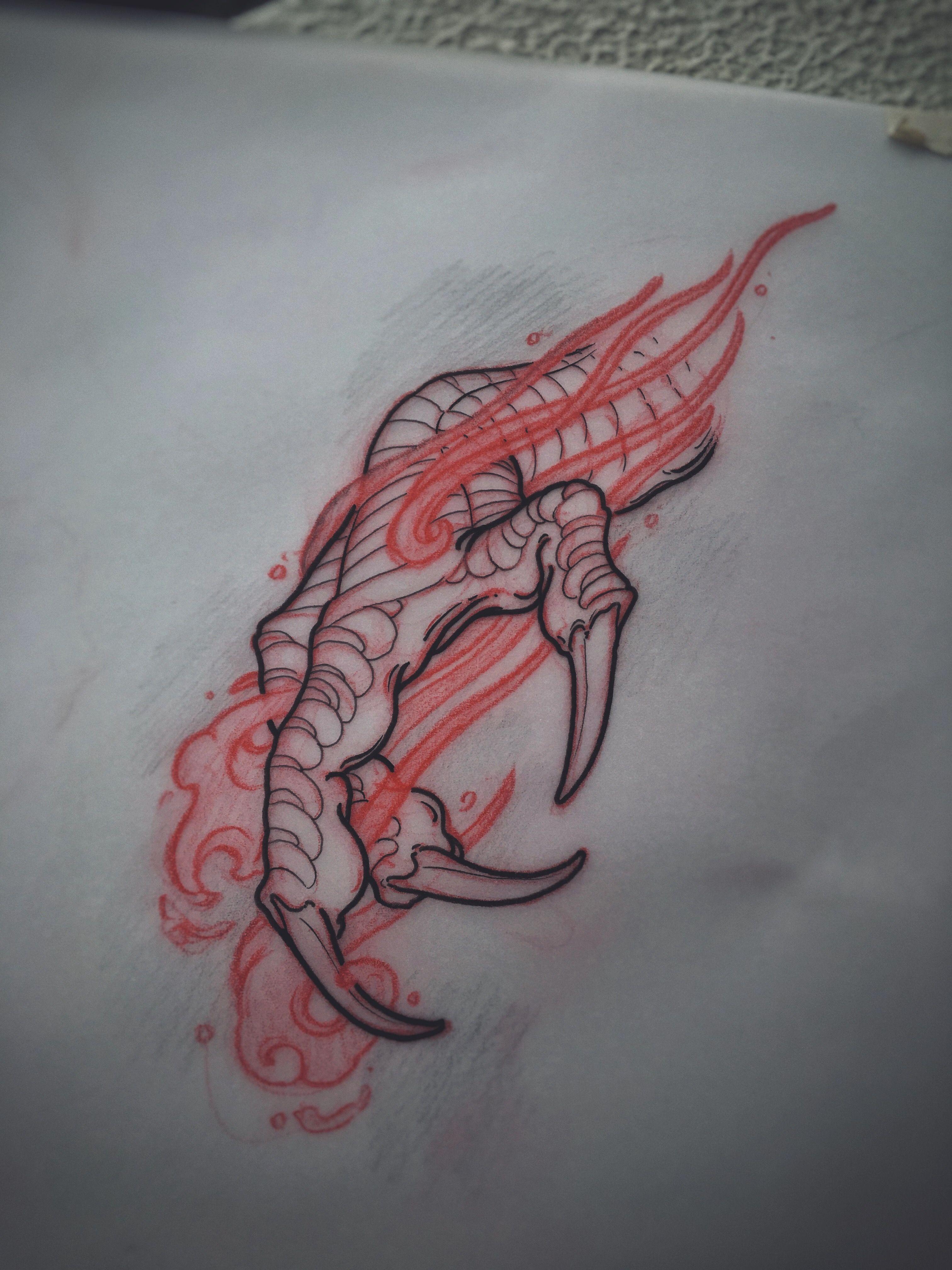 3024x4032 Dragon Claw Sketch By Akos ( Perth, Australia) Tattoo Ideas