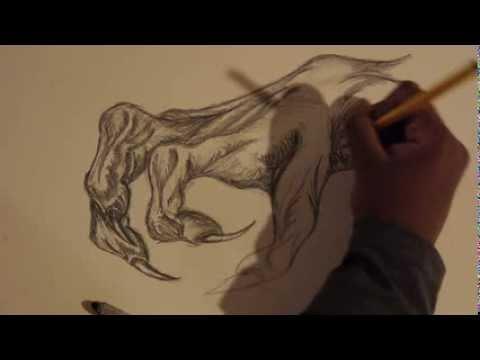 480x360 How To Draw A Dragon Claw