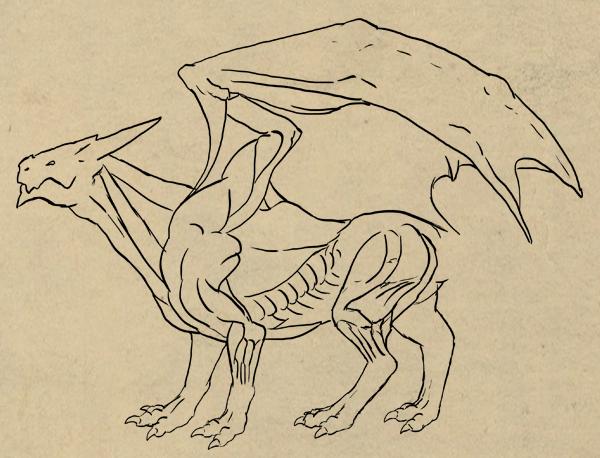 600x458 Rawr! How To Draw An Anatomically Correct Dragon