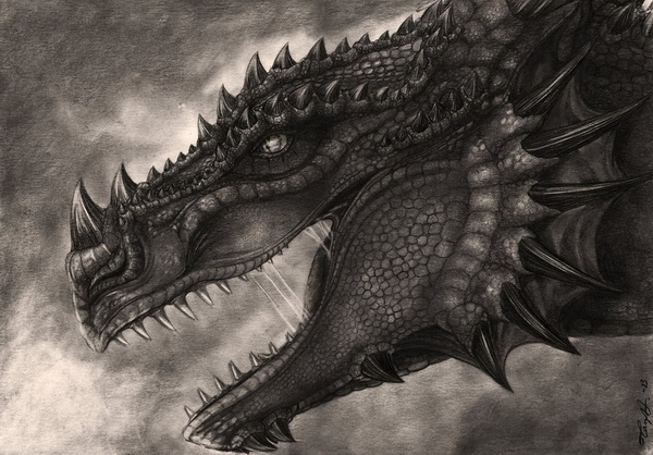600x418 Cool Dragon Drawings For Inspiration