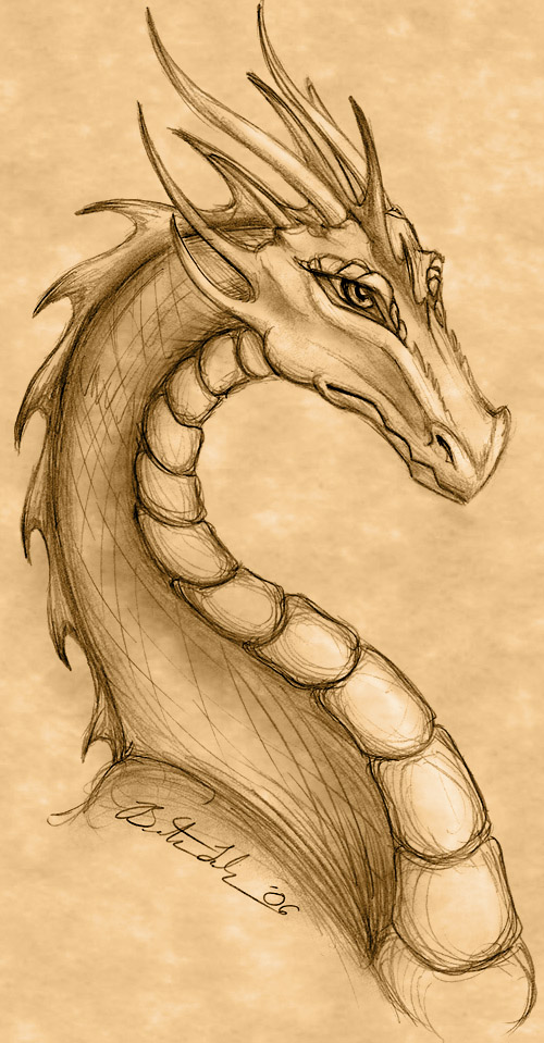 500x959 Dragon Drawing By Terrizae