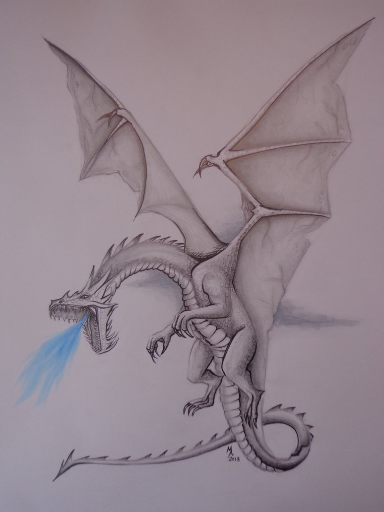 774x1032 Realistic Dragon Drawing By Masteringanime