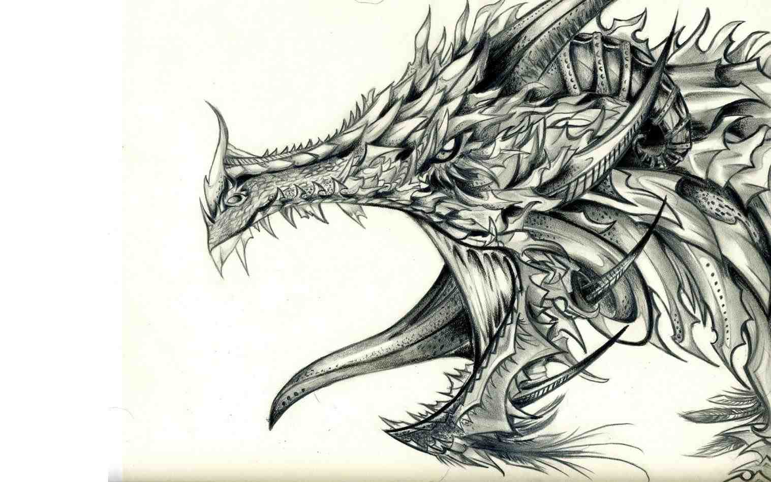 1517x948 The Images Collection of Drawings of dragons japanese dragon by