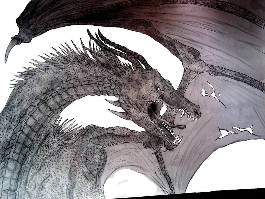 900x675 Dragon pen and pencil drawing by Kaikoura on DeviantArt