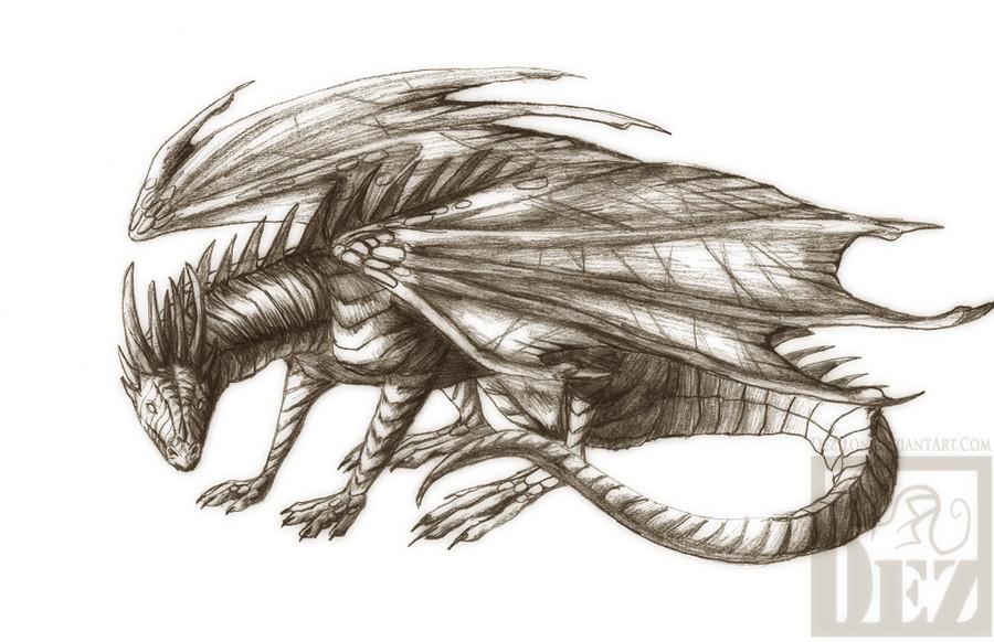 900x582 Pencil Dragon By Dezilon