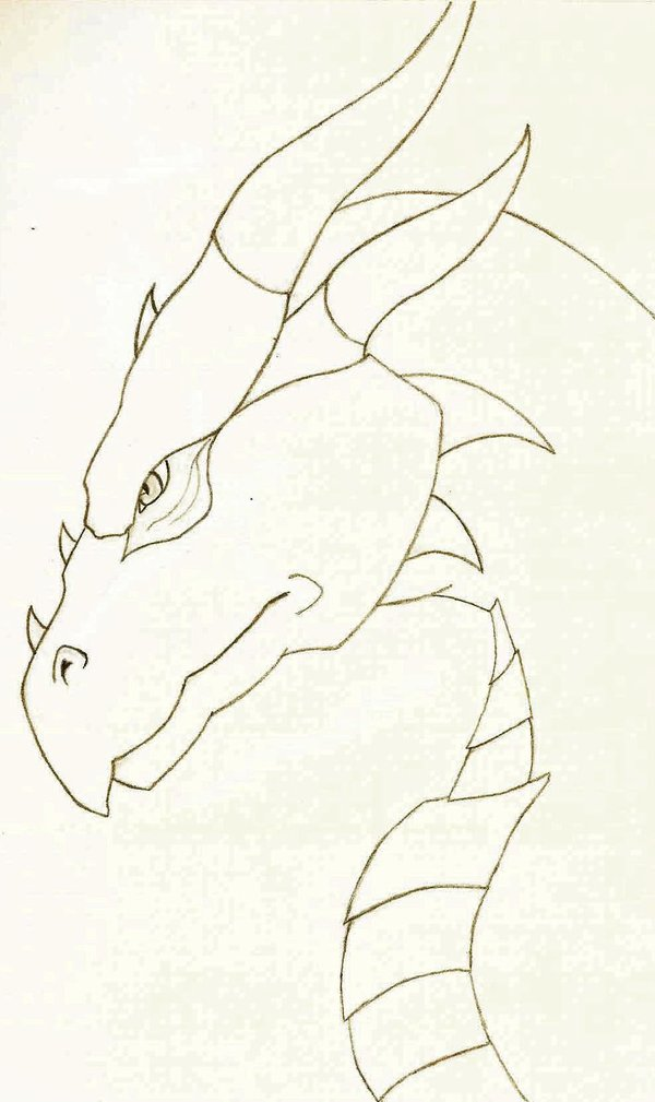 600x1009 Simple Dragon by OokamiAniyou on DeviantArt