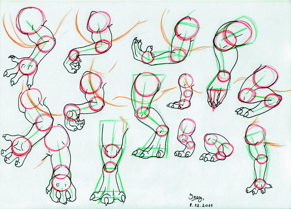 1024x734 Dragon Legs And Arms Tutorial By Natsuakai