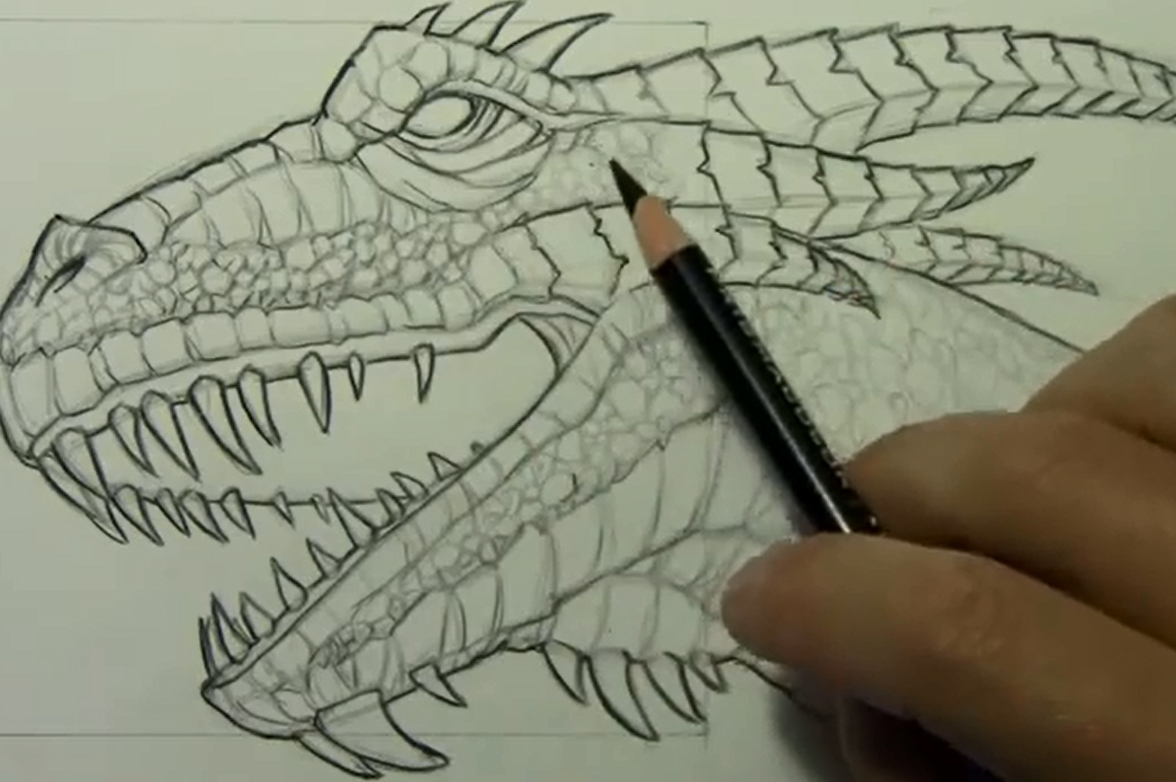 dragon drawing tutorials at getdrawings com free for personal use