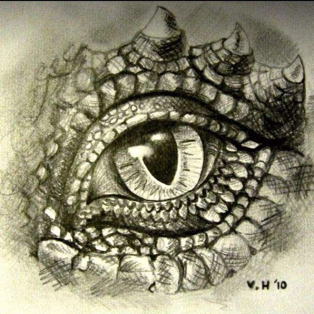 640x640 Graphite Pencil Drawing Dragon's Eye. While Many Adolescent Girls
