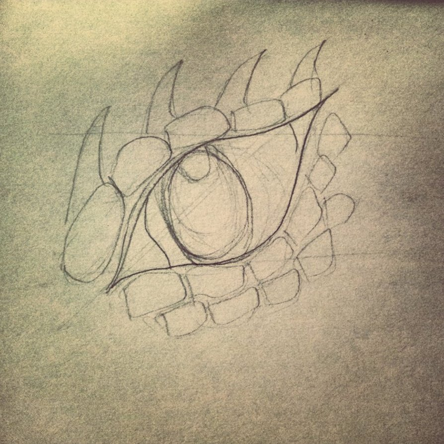 Dragon Eye Drawing Step By Step At Getdrawings Com Free For