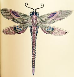 236x247 Dragonfly Scientific Drawing Of Scientific Illustration Painting