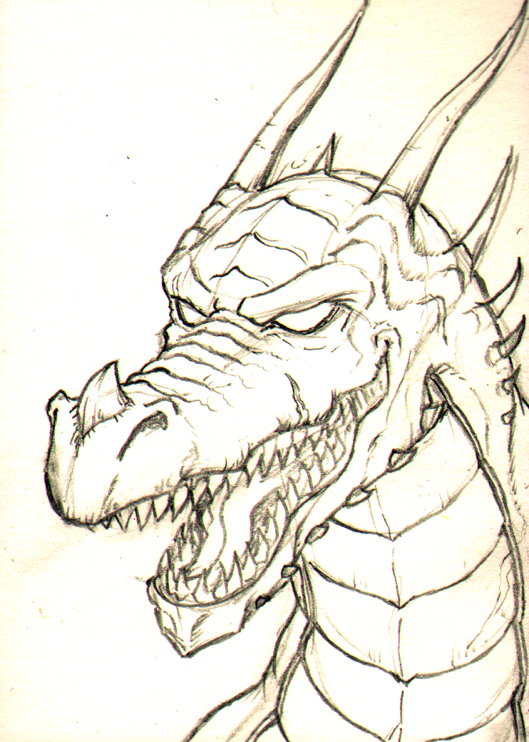 742x1040 chinese dragon head drawing