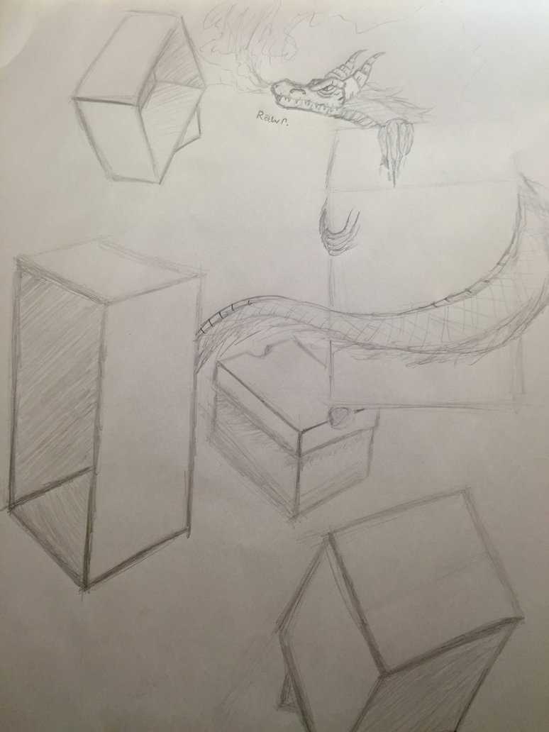 774x1032 Box Drawing Practice In My College Art Class. By Draco Salamander