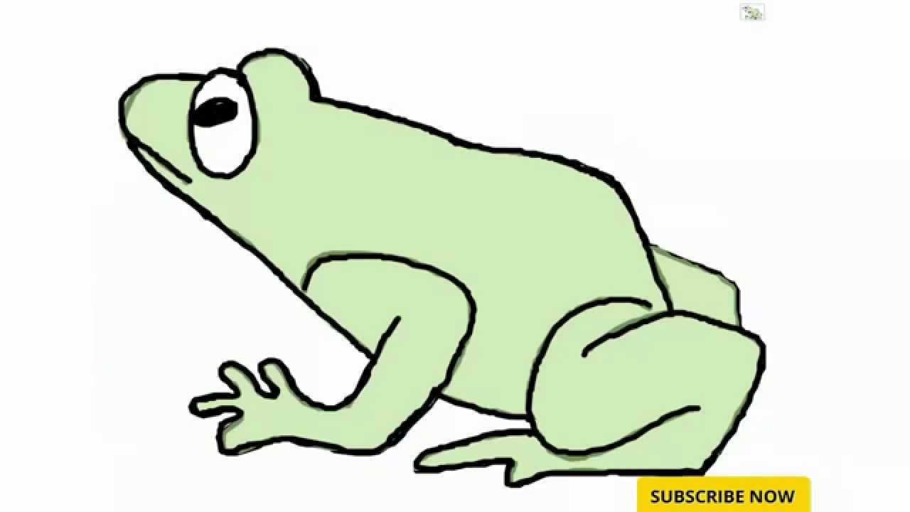 1280x720 Opportunities Frog Pictures For Kids How To Draw A Youtube