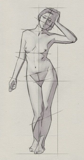 355x674 Anatomy Human Body Sketches Drawing Proportions