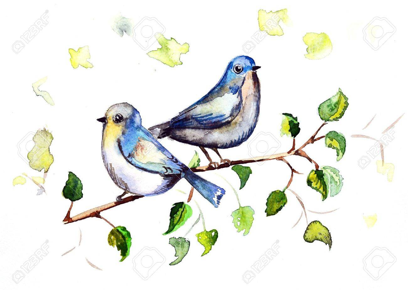 1300x926 Watercolor Drawing Birds Stock Photo, Picture And Royalty Free