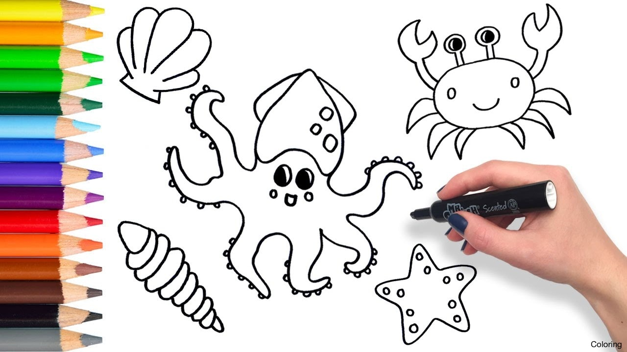 1280x720 Easy To Draw Aquatic Animals Sea Drawing Animal Drawings Clipart