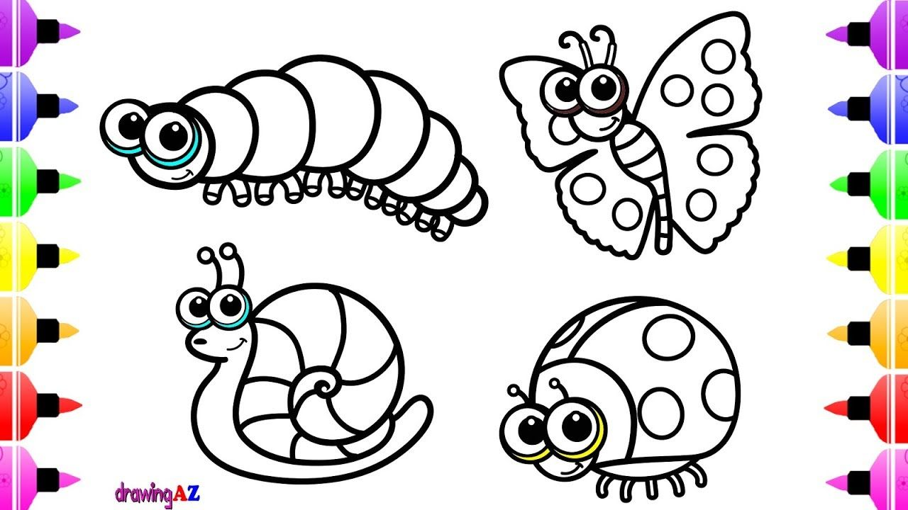 1280x720 How To Draw Insects Butterfly Snail For Kids Animals Coloring