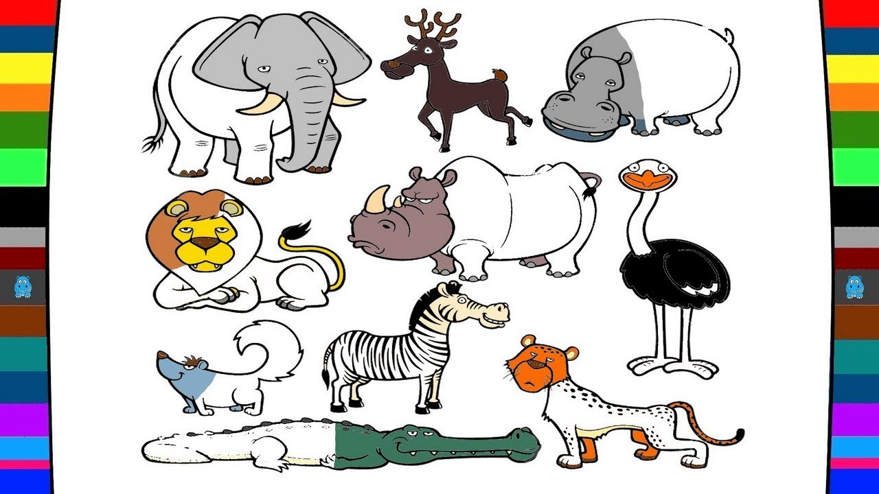 1280x720 Wild Animals Coloring Pages Drawing And Coloring Pages For Kids