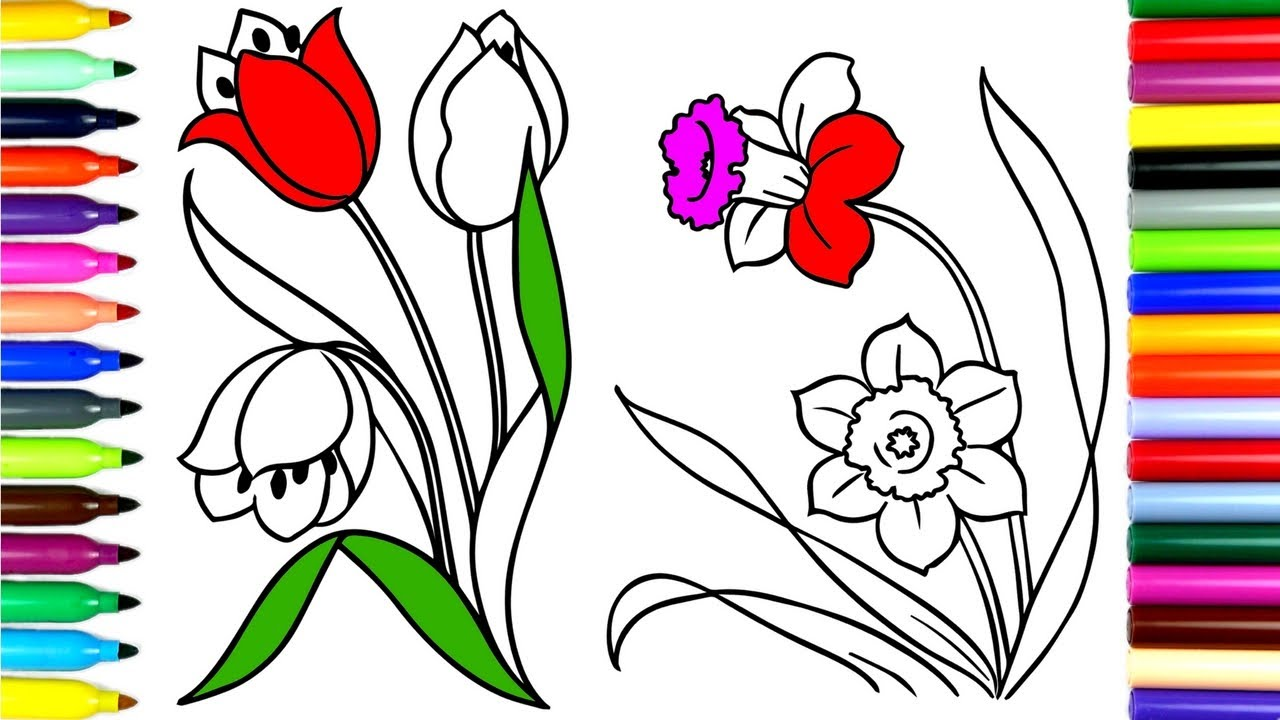 1280x720 Coloring Tulip Flowers How To Color Drawing Pages