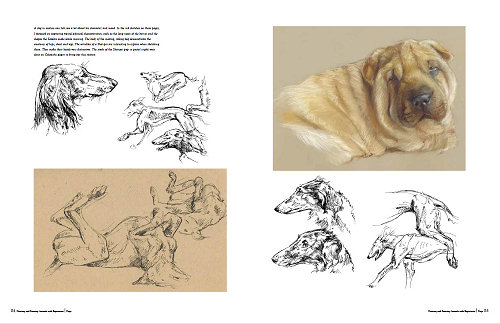 500x324 Book Drawing And Painting Animals With Expression Part1