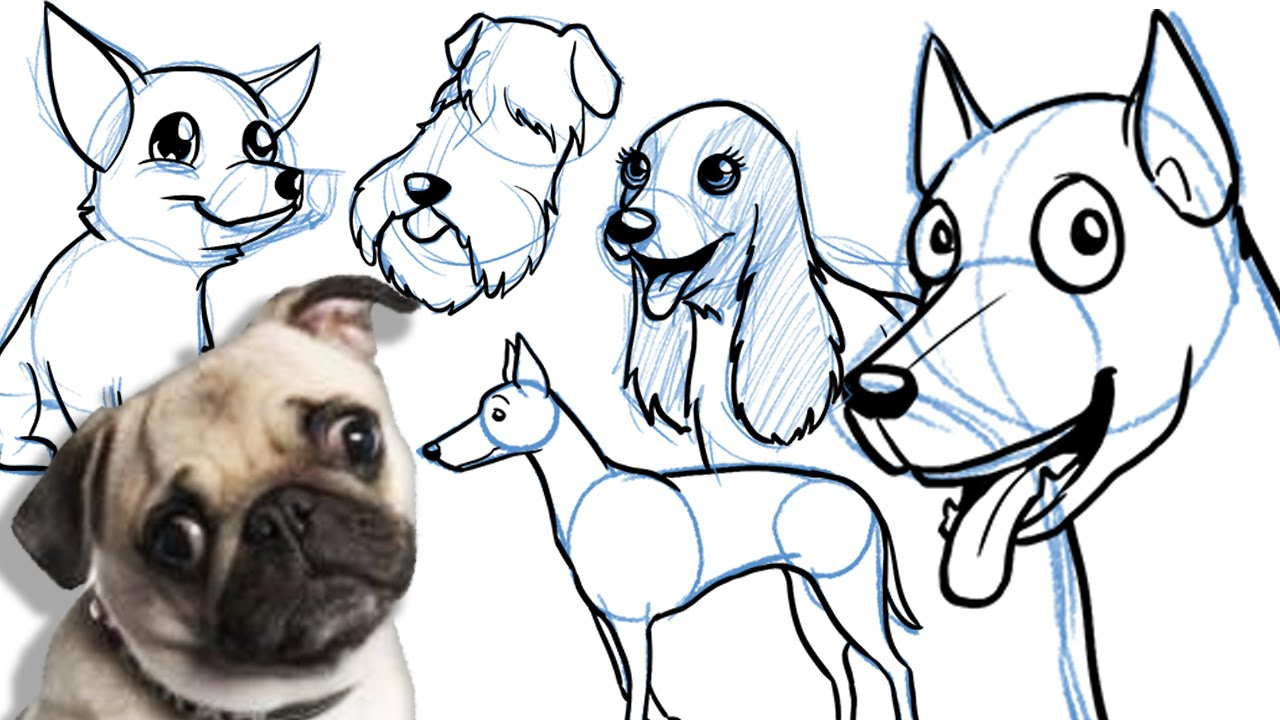 Drawing Pictures Of Dogs at GetDrawings.com | Free for personal use ...
