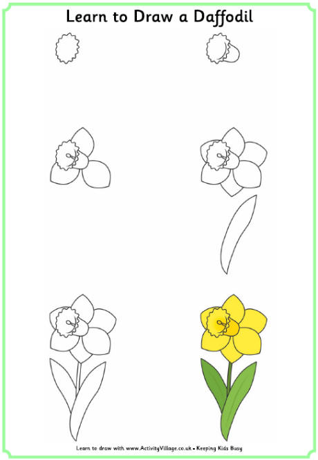 460x664 Learn to Draw Flowers