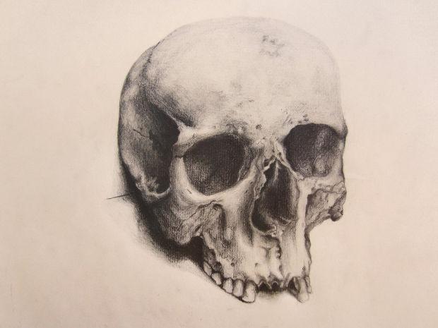 620x465 Skull Drawings, Art Ideas Design Trends