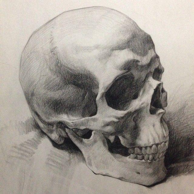 640x640 A Beautiful Skull Sketch.