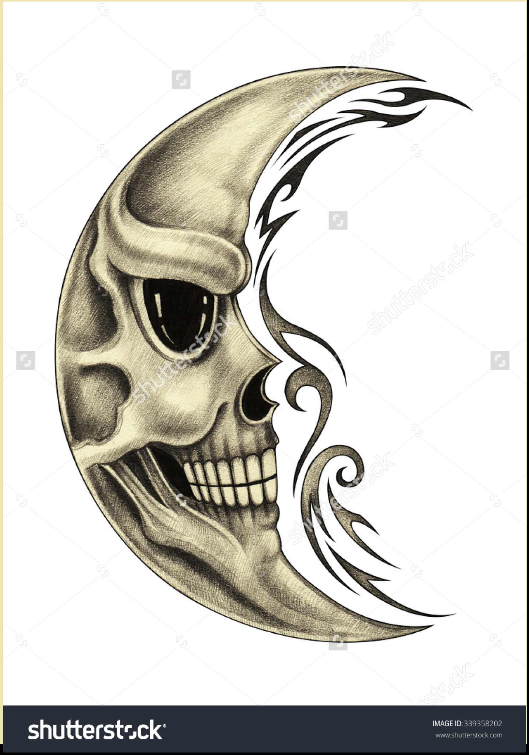 1693x2413 Skull Pencil Drawing
