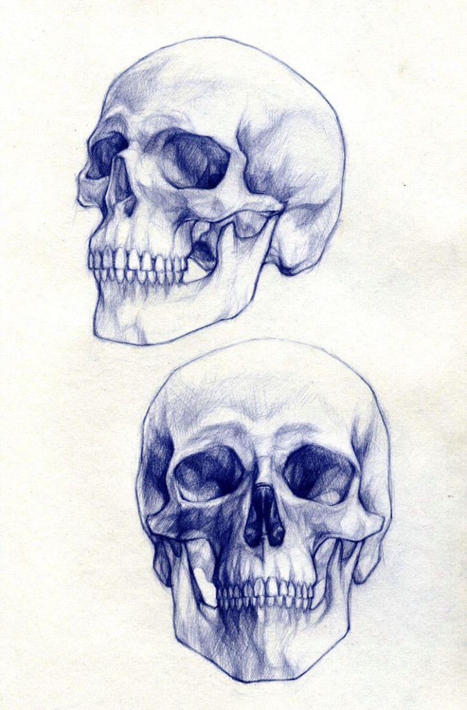 674x1024 Skull Drawings 1 Skulls Skull Drawings, Drawings