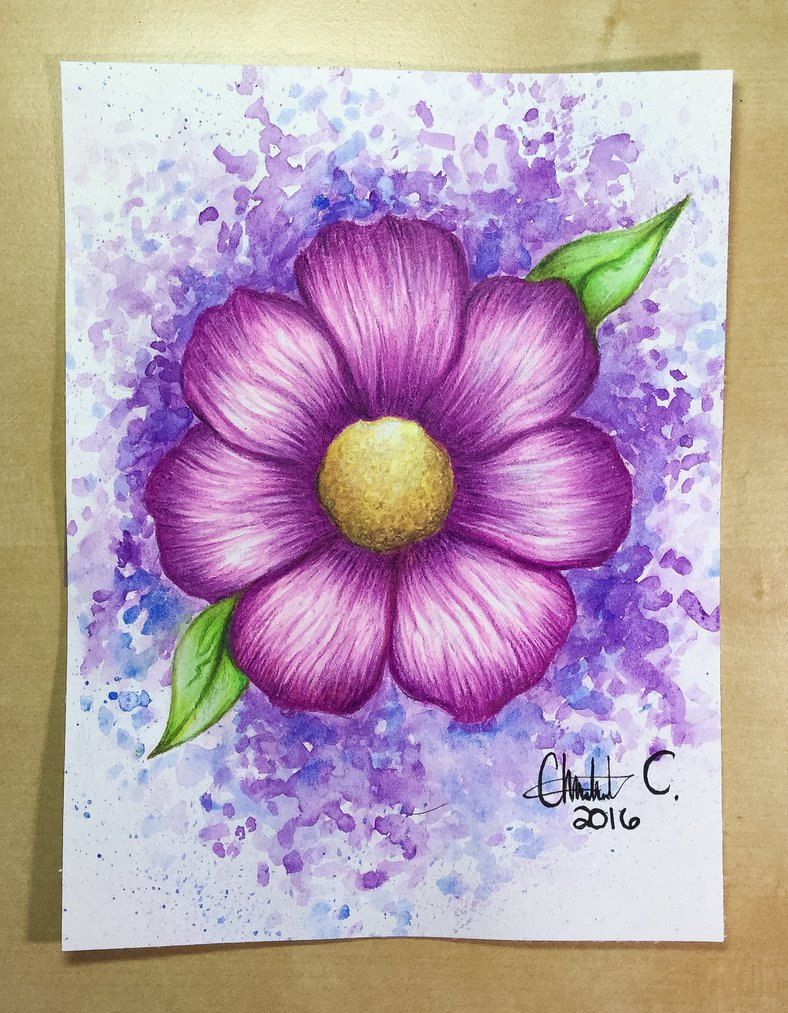 788x1013 Watercolor Pencil Drawing Of A Flower By Artistlizard101