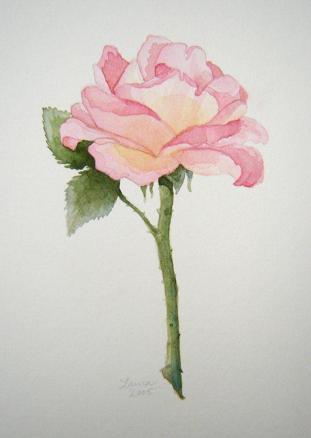 610x860 Flower Watercolor Drawings Watercolor Flower