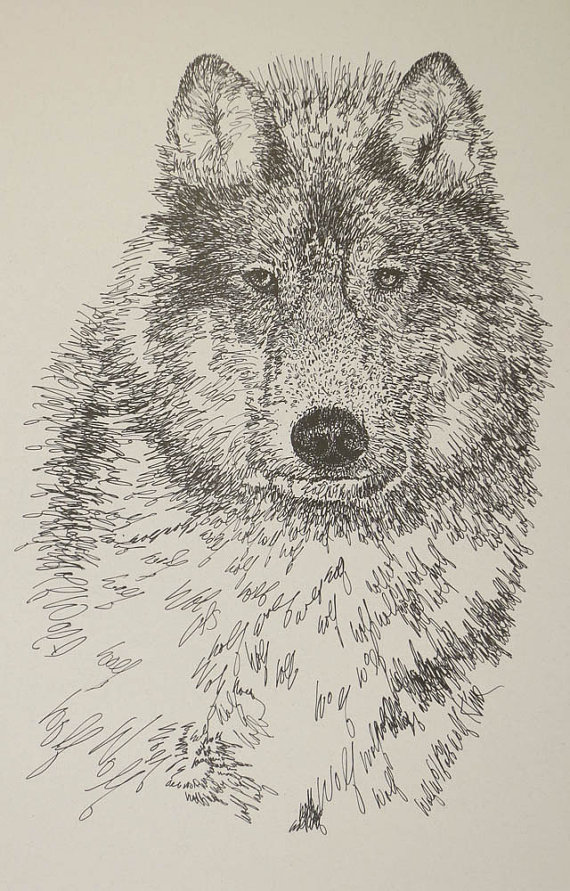 570x891 Gray Wolf Animal Art Portrait Drawing From Words. Great