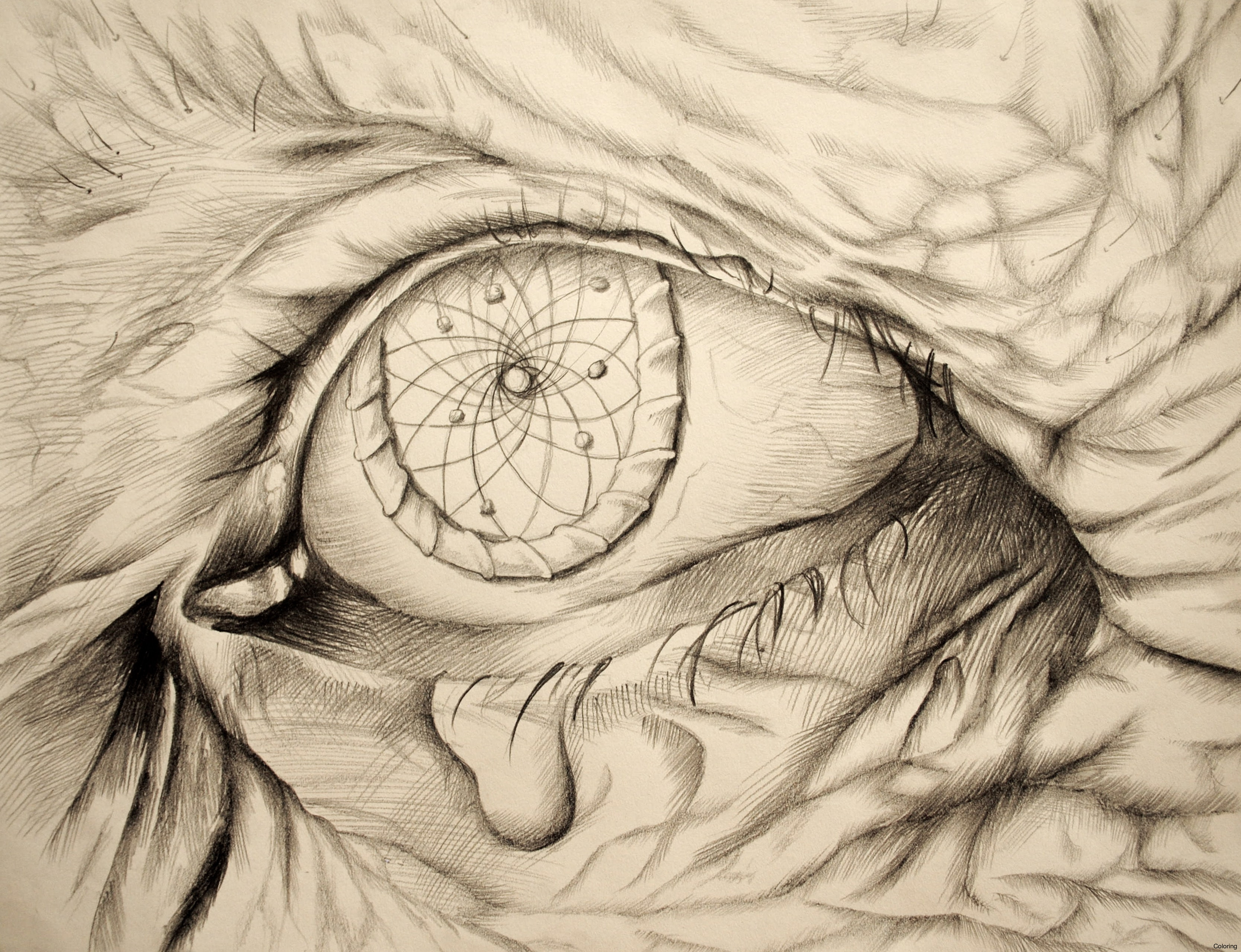 3336x2560 Pencil Drawings Of Dream Catcher Drawn Dreamcatcherdian And