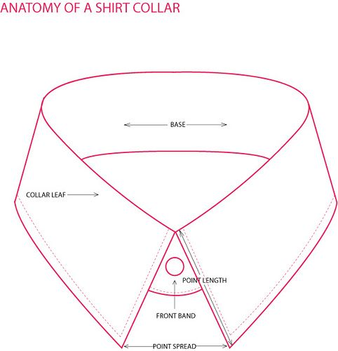 482x500 7 Best Anatomy Of A Shirt Images On Dress Shirts