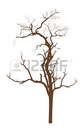 281x450 Dry Tree Vector Royalty Free Cliparts, Vectors, And Stock
